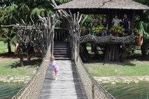 Bridge to treehouse island