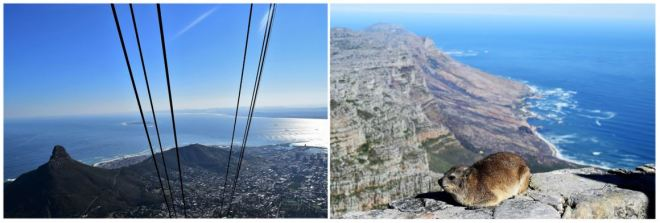 Atop Cape Town