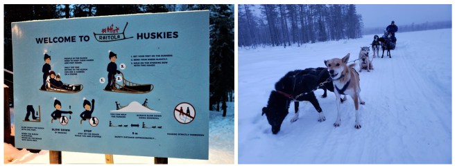 2 Dog sledding